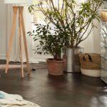 Musterring Saphira Kleiderschrank Bett 200x200 Schlafzimmer Schrank Kieselgrau Kommode Esstisch Betten Wohnzimmer Musterring Saphira