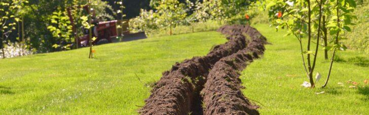 Medium Size of Paul Potato Kartoffelturm Erfahrungen Testbericht Meine Garten Wohnzimmer Paul Potato Kartoffelturm Erfahrungen