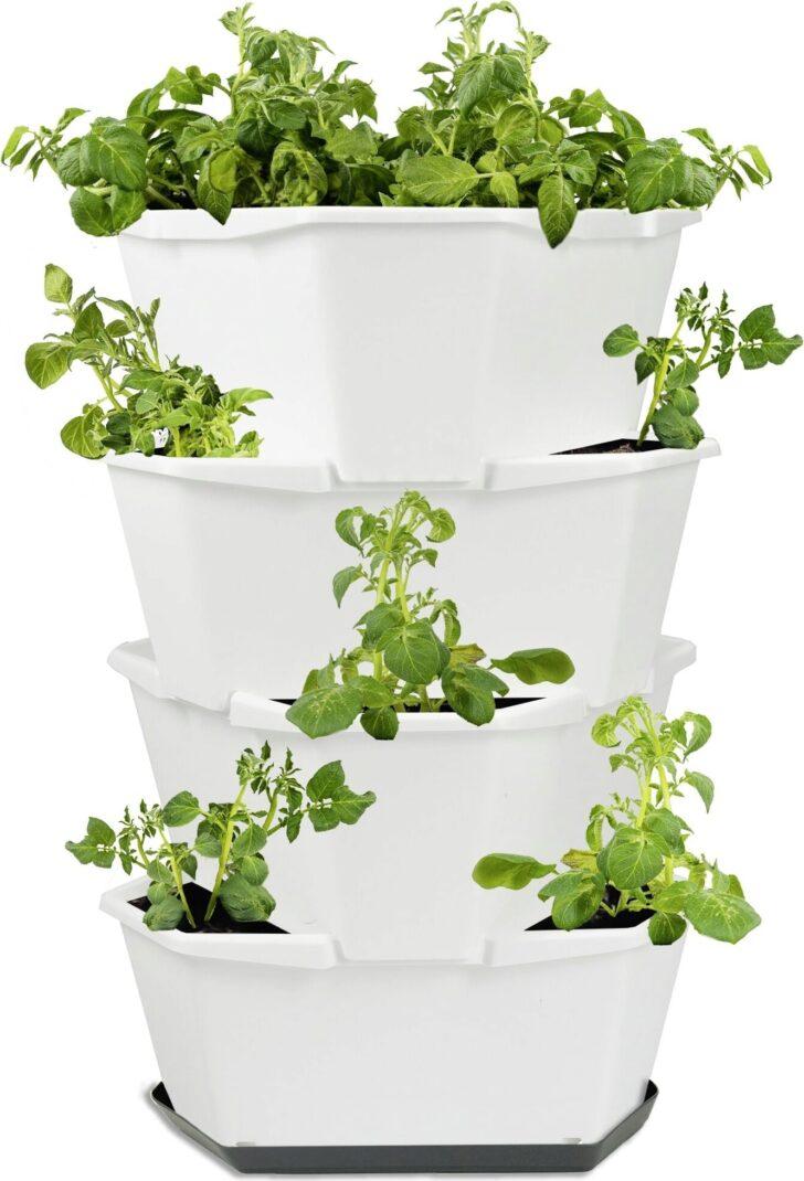 Paul Potato Kartoffelturm Erfahrungen Gusta Garden Starter 4 Etagen Wei Bloomling Wohnzimmer Paul Potato Kartoffelturm Erfahrungen