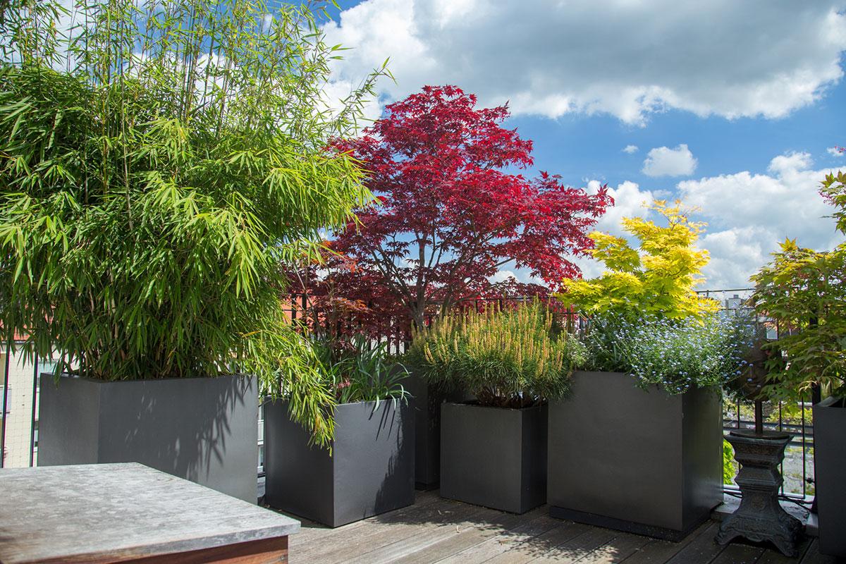 Full Size of Bewässerung Balkon Bewässerungssysteme Garten Test Automatisch Bewässerungssystem Wohnzimmer Bewässerung Balkon