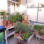 Bewässerung Balkon Bewsserung Am Mein Schner Garten Bewässerungssysteme Bewässerungssystem Automatisch Test Wohnzimmer Bewässerung Balkon
