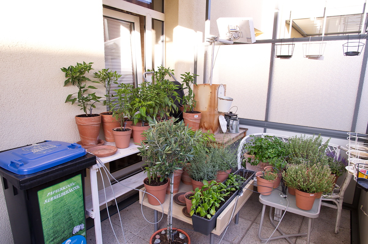 Full Size of Bewässerung Balkon Bewsserung Am Mein Schner Garten Bewässerungssysteme Bewässerungssystem Automatisch Test Wohnzimmer Bewässerung Balkon