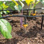 Bewässerung Balkon Bewsserungssystem Test 2020 Besten Im Vergleich Bewässerungssysteme Garten Automatisch Bewässerungssystem Wohnzimmer Bewässerung Balkon