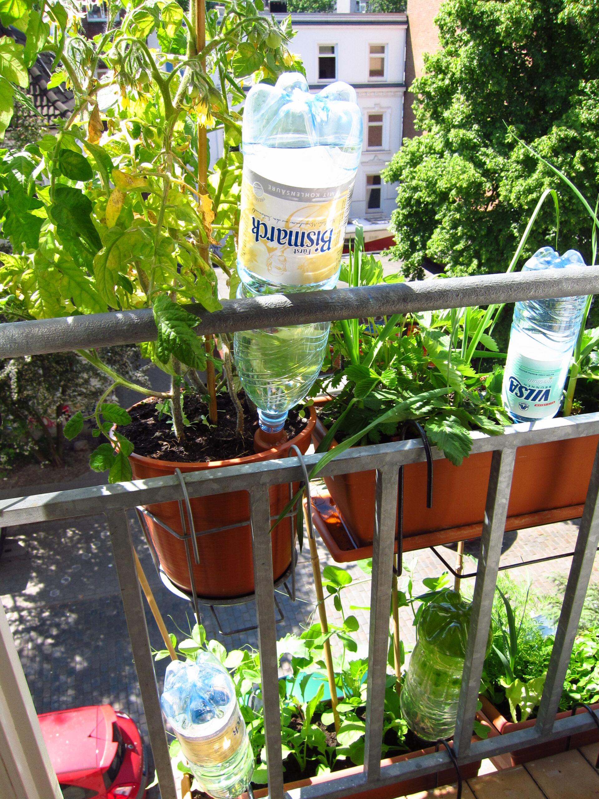 Full Size of Erfahrungsbericht Bewsserung Mit Aufstzen Fr Pet Flaschen Bewässerung Garten Bewässerungssysteme Test Automatisch Bewässerungssystem Wohnzimmer Bewässerung Balkon