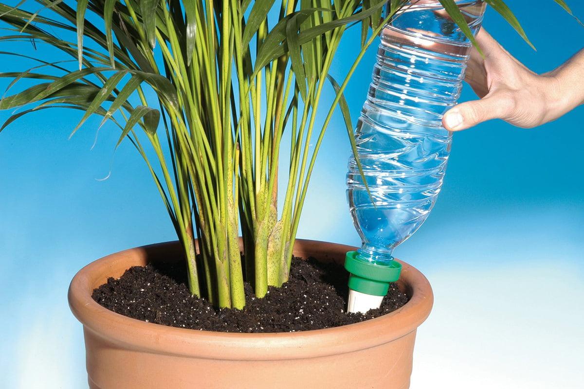 Full Size of Bewässerung Balkon Gievertretung 4 Ideen Zur Bewsserung Bewässerungssysteme Garten Test Bewässerungssystem Automatisch Wohnzimmer Bewässerung Balkon