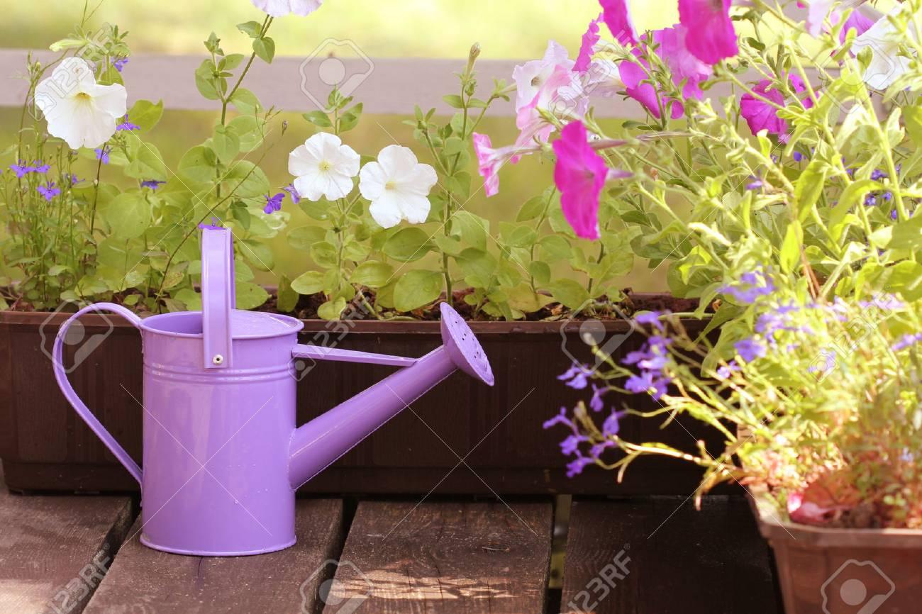 Full Size of Bewässerung Balkon Bewsserung Blumen Im Lizenzfreie Fotos Garten Automatisch Bewässerungssysteme Test Bewässerungssystem Wohnzimmer Bewässerung Balkon