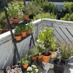 Garten Bewässerung Automatisch Bewässerungssystem Bewässerungssysteme Test Wohnzimmer Bewässerung Balkon