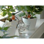 Bewässerung Balkon Wohnzimmer Bewässerung Balkon Obi Automatische Bewsserung 3 Stck Kaufen Bei Bewässerungssysteme Garten Bewässerungssystem Automatisch Test