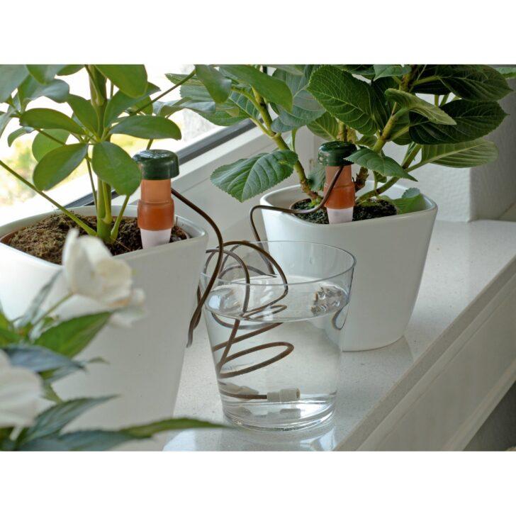 Medium Size of Bewässerung Balkon Obi Automatische Bewsserung 3 Stck Kaufen Bei Bewässerungssysteme Garten Bewässerungssystem Automatisch Test Wohnzimmer Bewässerung Balkon