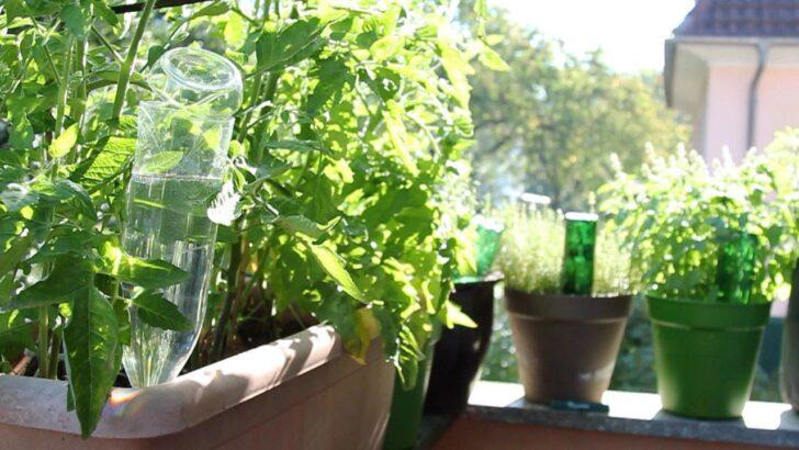 Medium Size of Bewässerung Balkon Blumen Und Pflanzen Automatisch Bewssern Eat Smarter Garten Bewässerungssysteme Bewässerungssystem Test Wohnzimmer Bewässerung Balkon