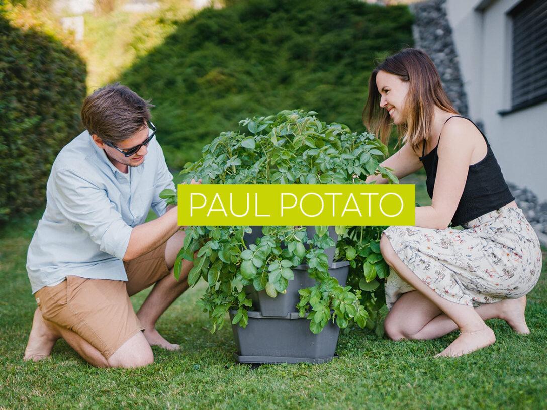 Large Size of Paul Potato Kartoffelturm Erfahrungen Der Weltweit Erste Gusta Garden Wohnzimmer Paul Potato Kartoffelturm Erfahrungen