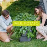 Paul Potato Kartoffelturm Erfahrungen Der Weltweit Erste Gusta Garden Wohnzimmer Paul Potato Kartoffelturm Erfahrungen