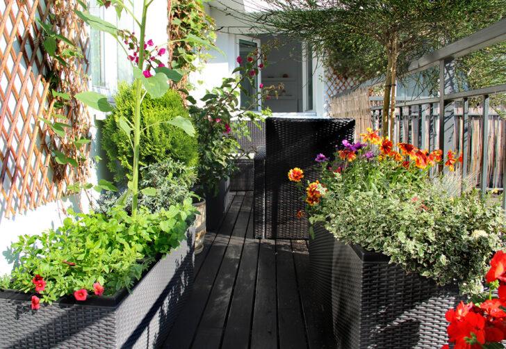 Medium Size of Bewässerung Balkon Automatische Bewsserung Terrasse Set Preisvorteil Von Garten Automatisch Bewässerungssystem Bewässerungssysteme Test Wohnzimmer Bewässerung Balkon