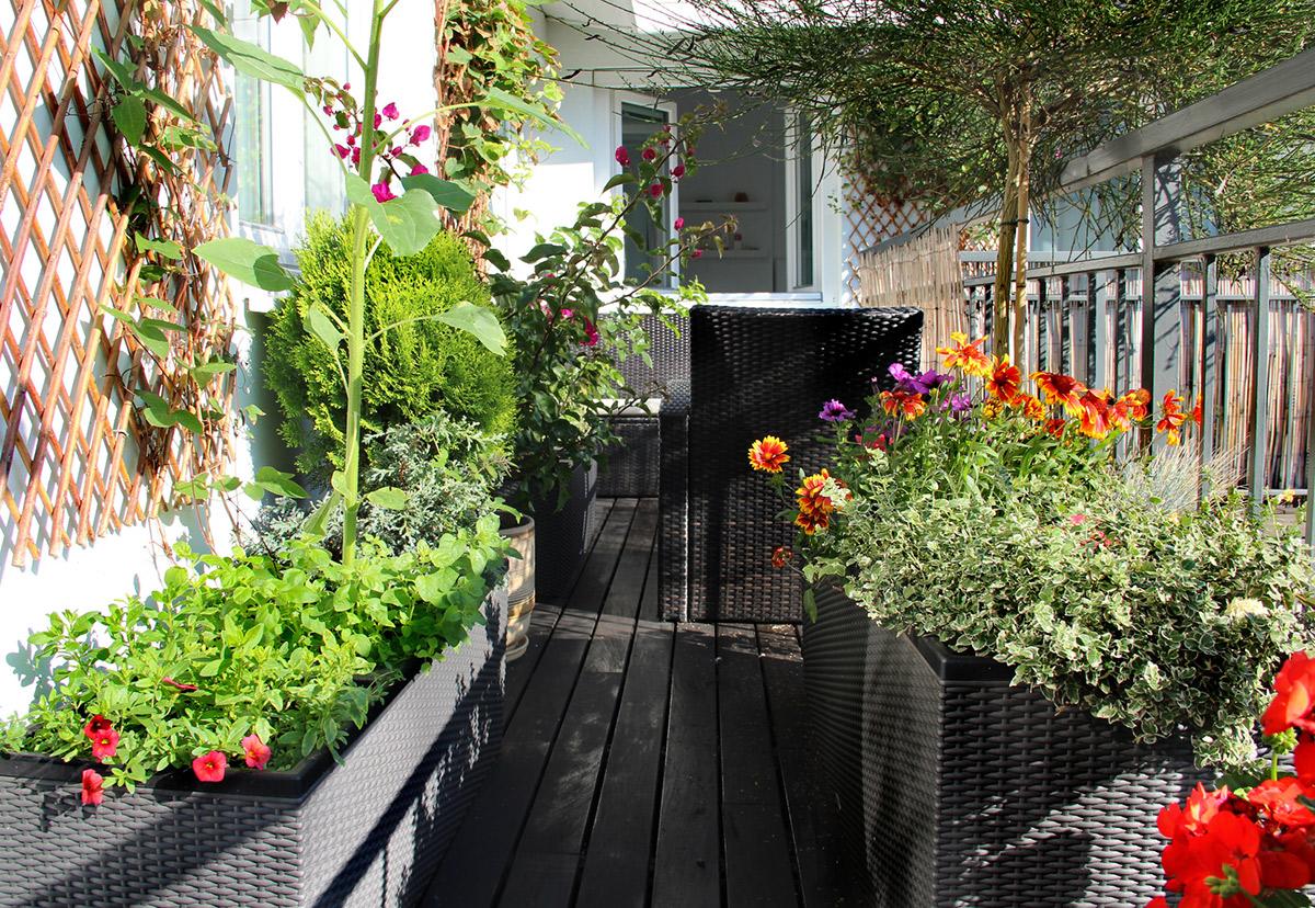 Full Size of Bewässerung Balkon Automatische Bewsserung Terrasse Set Preisvorteil Von Garten Automatisch Bewässerungssystem Bewässerungssysteme Test Wohnzimmer Bewässerung Balkon