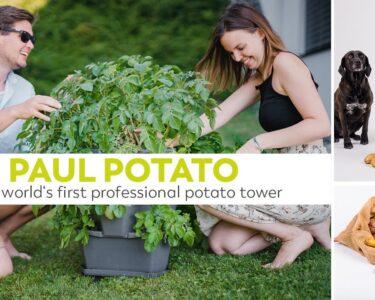 Paul Potato Kartoffelturm Erfahrungen Wohnzimmer Paul Potato Kartoffelturm Erfahrungen Der Weltweit Erste Professionelle