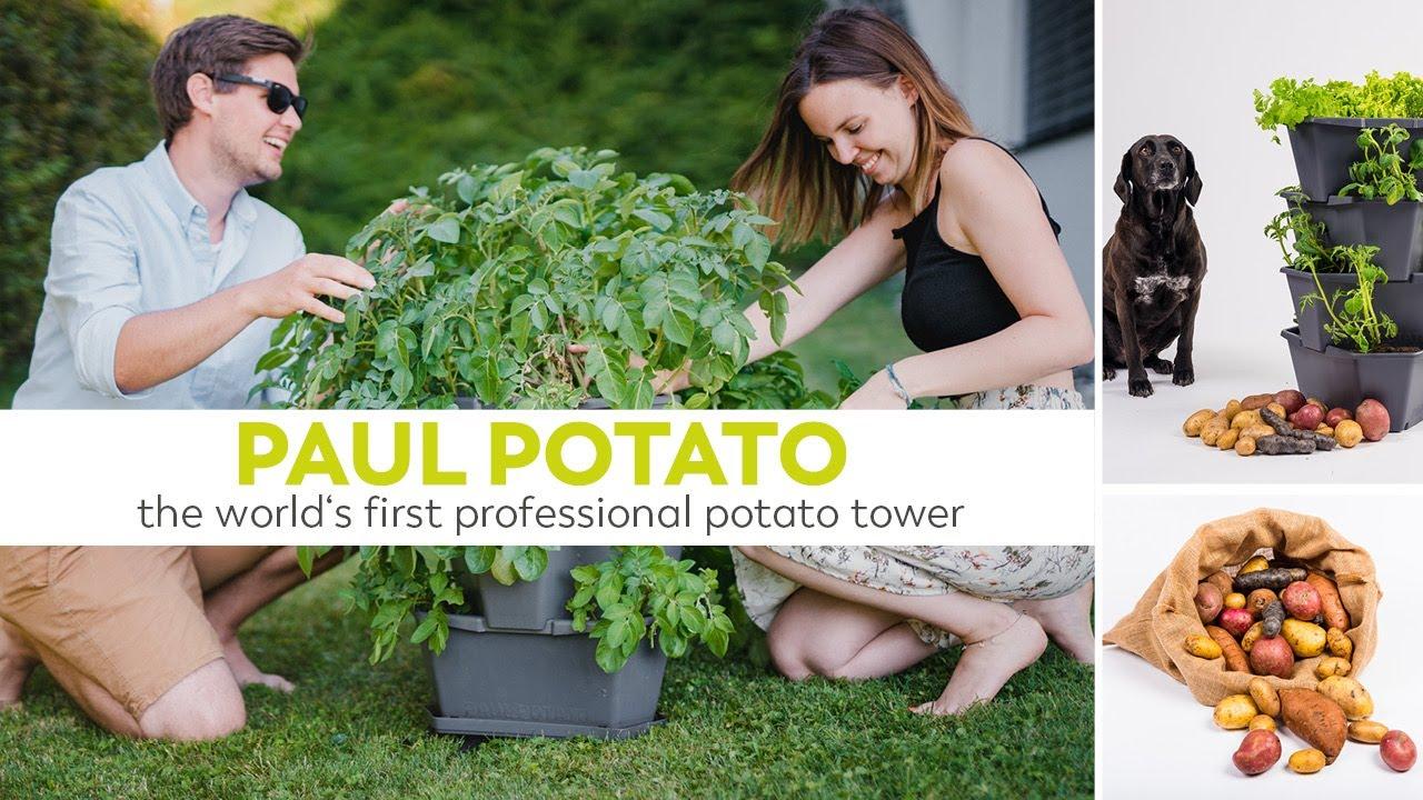 Full Size of Paul Potato Kartoffelturm Erfahrungen Der Weltweit Erste Professionelle Wohnzimmer Paul Potato Kartoffelturm Erfahrungen