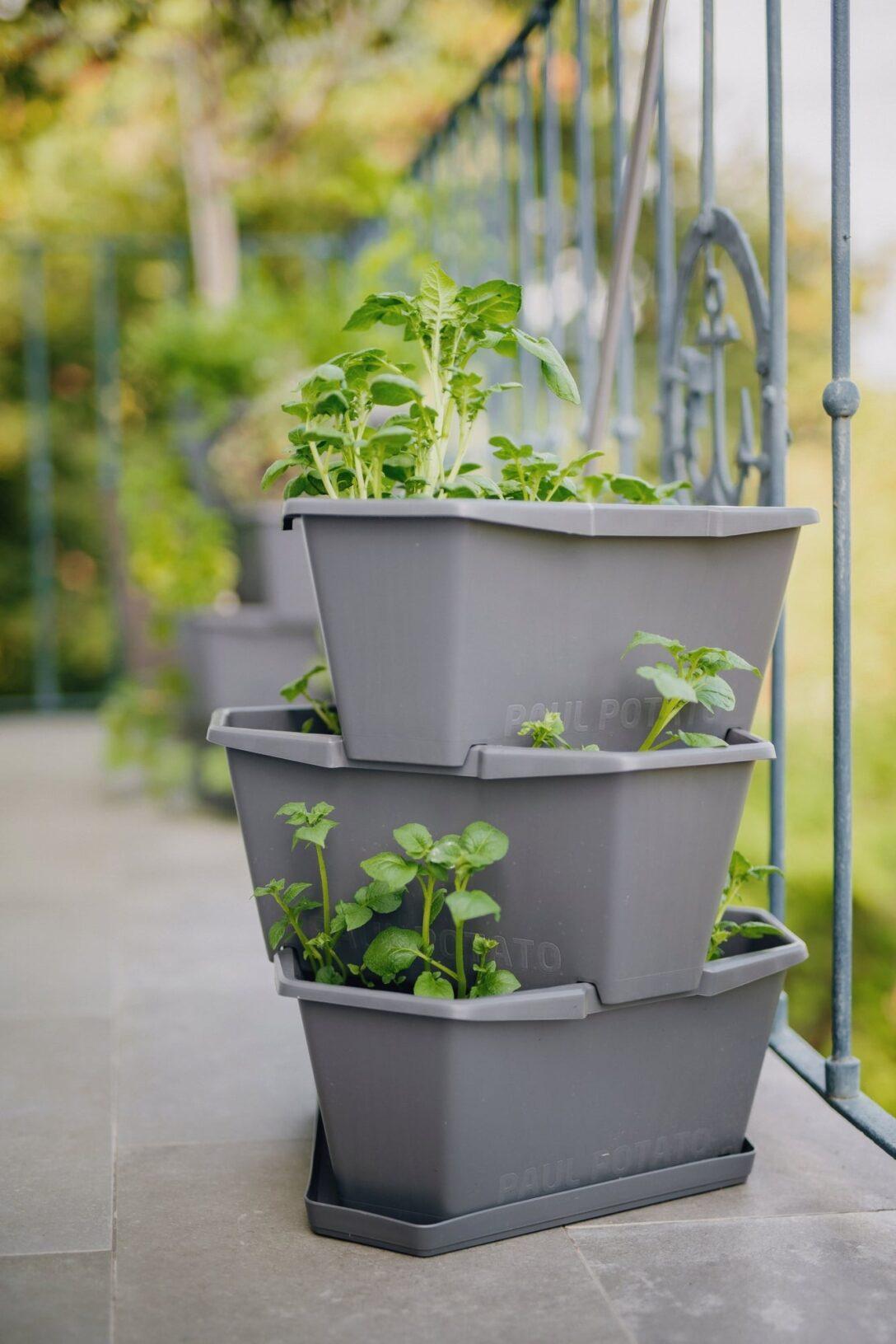 Paul Potato Kartoffelturm Erfahrungen Gusta Garden Starter 3 Etagen Bloomling Deutschland