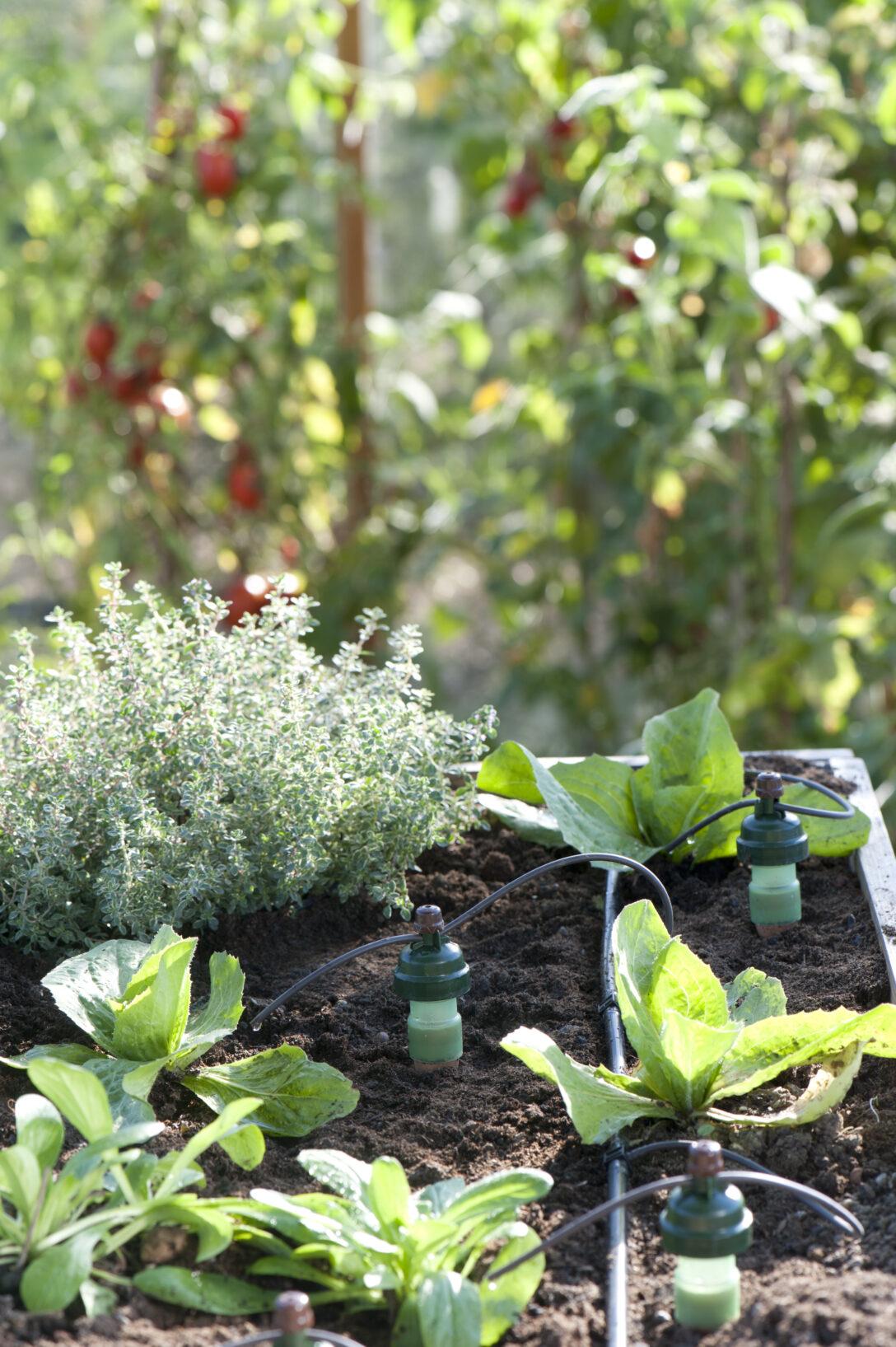 Large Size of Bewässerung Balkon Bewässerungssysteme Garten Automatisch Test Bewässerungssystem Wohnzimmer Bewässerung Balkon