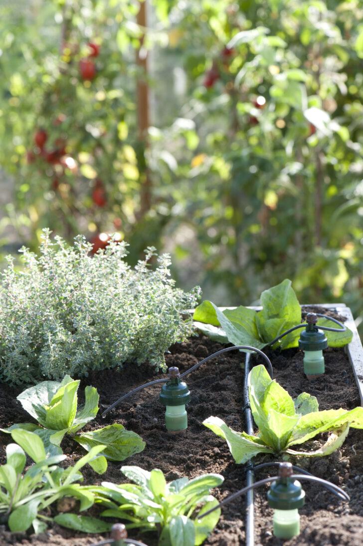 Medium Size of Bewässerung Balkon Bewässerungssysteme Garten Automatisch Test Bewässerungssystem Wohnzimmer Bewässerung Balkon