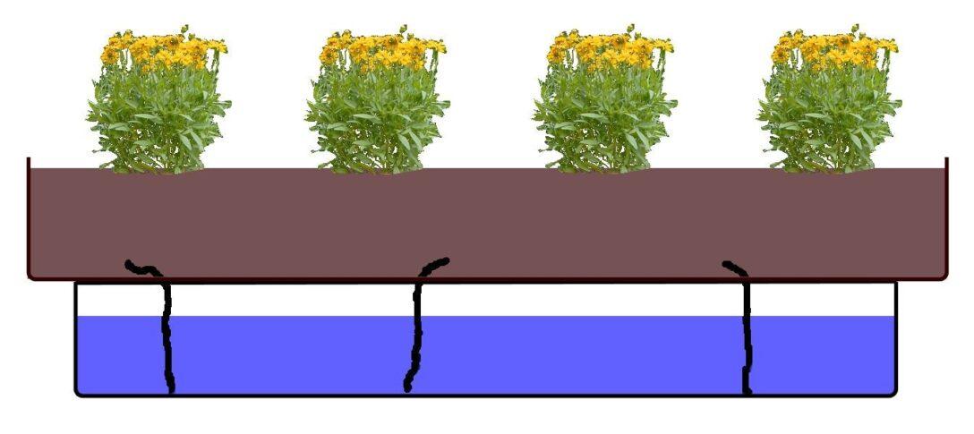 Large Size of Bewässerung Balkon Guenstig Bewsserungssysteme Balkonpflanzendoc Garten Bewässerungssysteme Test Automatisch Bewässerungssystem Wohnzimmer Bewässerung Balkon