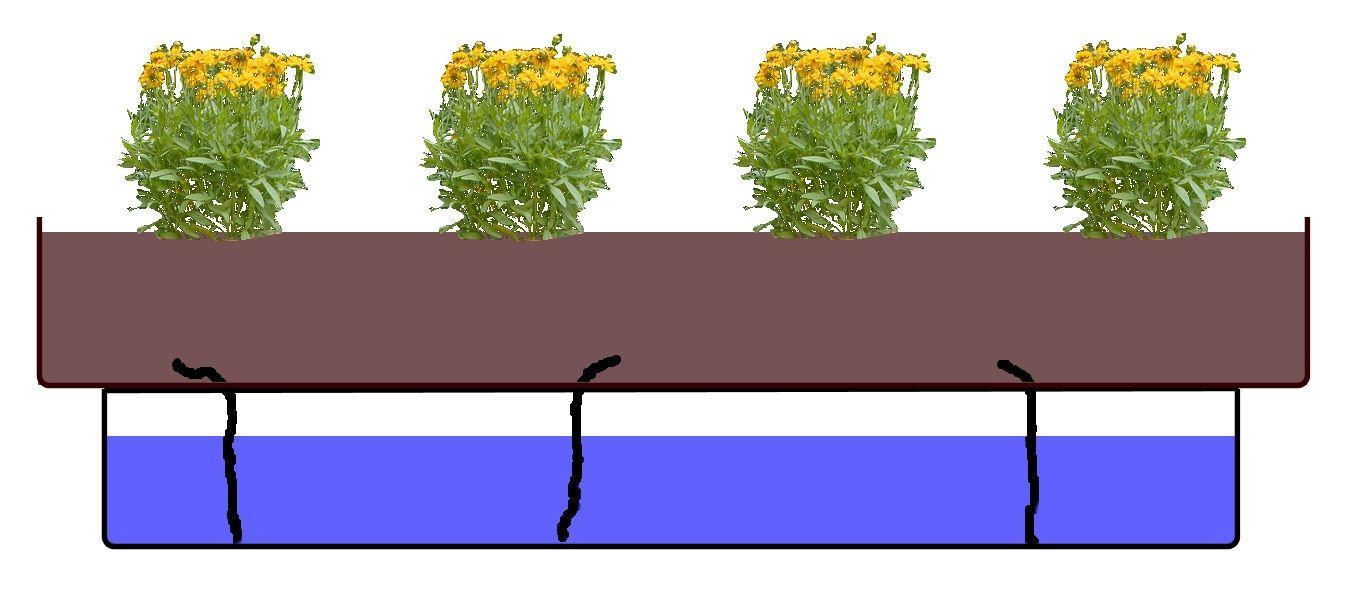 Full Size of Bewässerung Balkon Guenstig Bewsserungssysteme Balkonpflanzendoc Garten Bewässerungssysteme Test Automatisch Bewässerungssystem Wohnzimmer Bewässerung Balkon