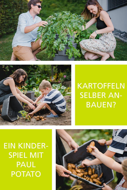 Paul Potato Kartoffelturm Erfahrungen Pin Von Waltraud Auf Gemsegarten In 2020 Kartoffelpflanzen