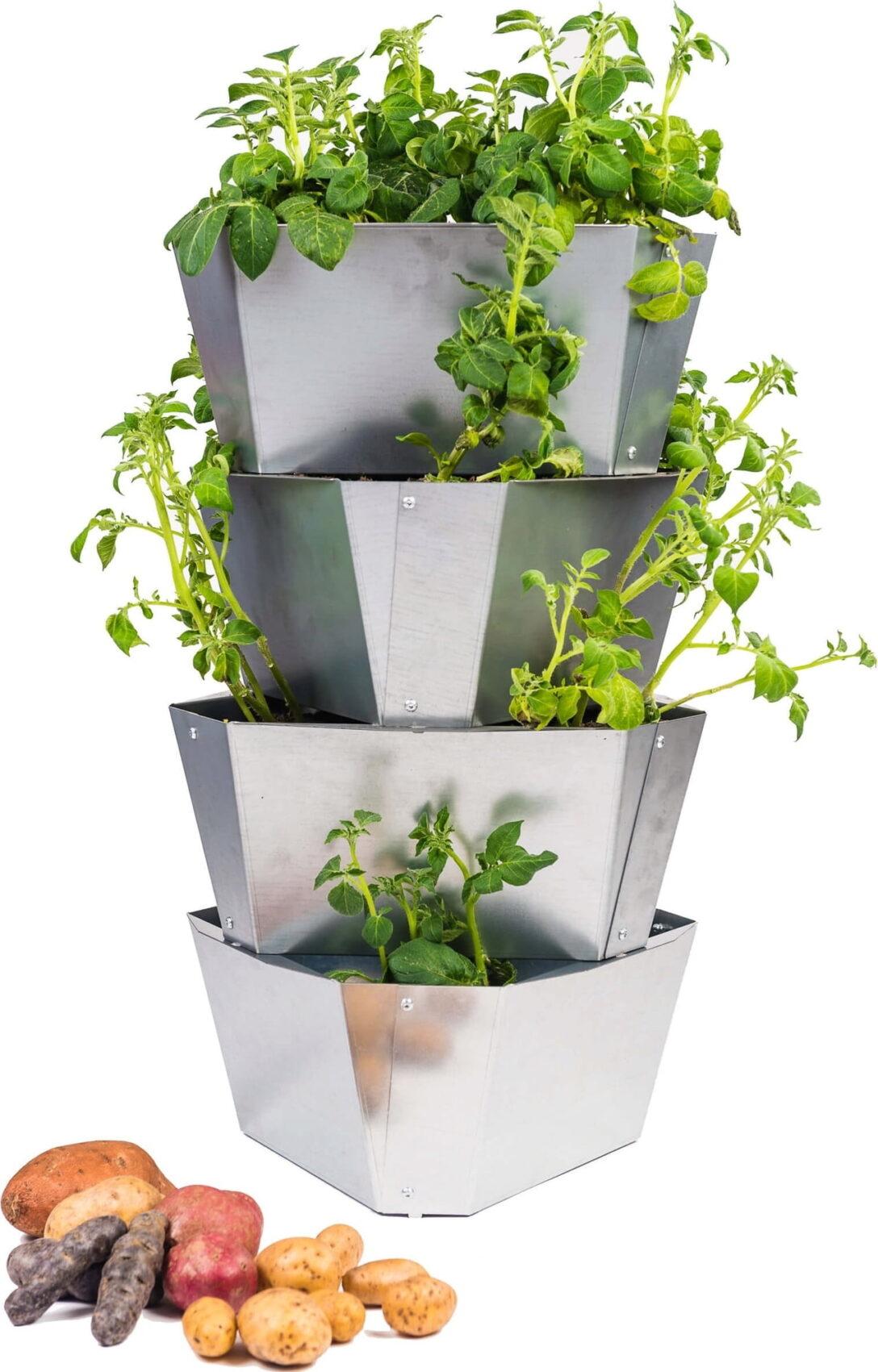 Paul Potato Kartoffelturm Erfahrungen Gusta Garden Starter Aus Stahl 4 Etagen Bloomling