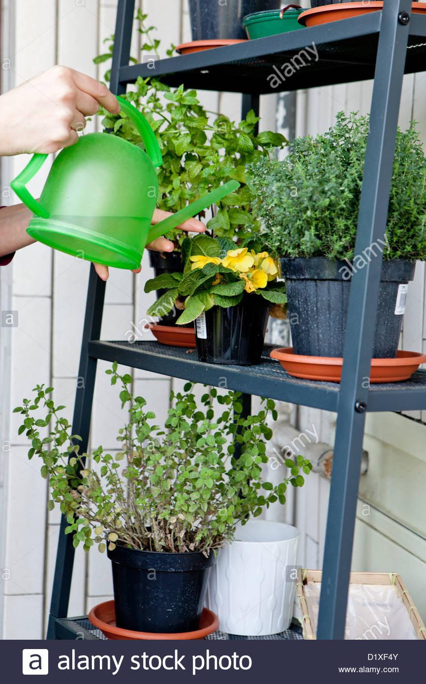 Bewässerung Balkon Frau Bewässerungssysteme Garten Bewässerungssystem Automatisch Test