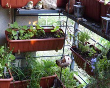Bewässerung Balkon Wohnzimmer Geeignete Pflanzgefe Nutzbalkon 28417 Bio Balkon Bewässerungssysteme Garten Bewässerungssystem Test Bewässerung Automatisch