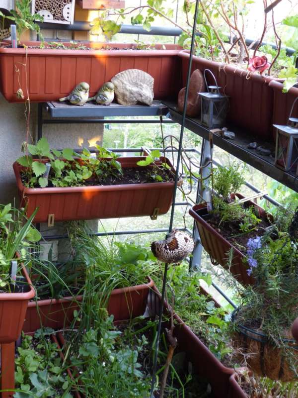 Full Size of Geeignete Pflanzgefe Nutzbalkon 28417 Bio Balkon Bewässerungssysteme Garten Bewässerungssystem Test Bewässerung Automatisch Wohnzimmer Bewässerung Balkon