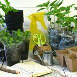 Bewässerung Balkon Pflanzen Gieen Im Urlaub Bewssern Sie Ihre Blumen Automatisch Garten Bewässerungssystem Bewässerungssysteme Test Wohnzimmer Bewässerung Balkon