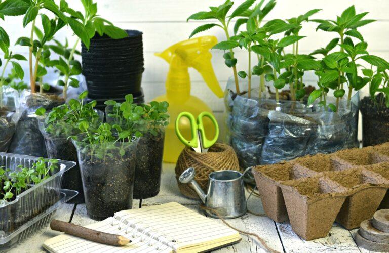 Bewässerung Balkon Wohnzimmer Bewässerung Balkon Pflanzen Gieen Im Urlaub Bewssern Sie Ihre Blumen Automatisch Garten Bewässerungssystem Bewässerungssysteme Test
