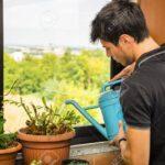 Bewässerung Balkon Attraktiver Junger Mann Auf Apartment Mit Bewsserung Von Garten Automatisch Bewässerungssysteme Bewässerungssystem Test Wohnzimmer Bewässerung Balkon