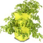 Paul Potato Kartoffelturm Erfahrungen Gusta Garden Starter 4 Etagen Grn From Austria Wohnzimmer Paul Potato Kartoffelturm Erfahrungen