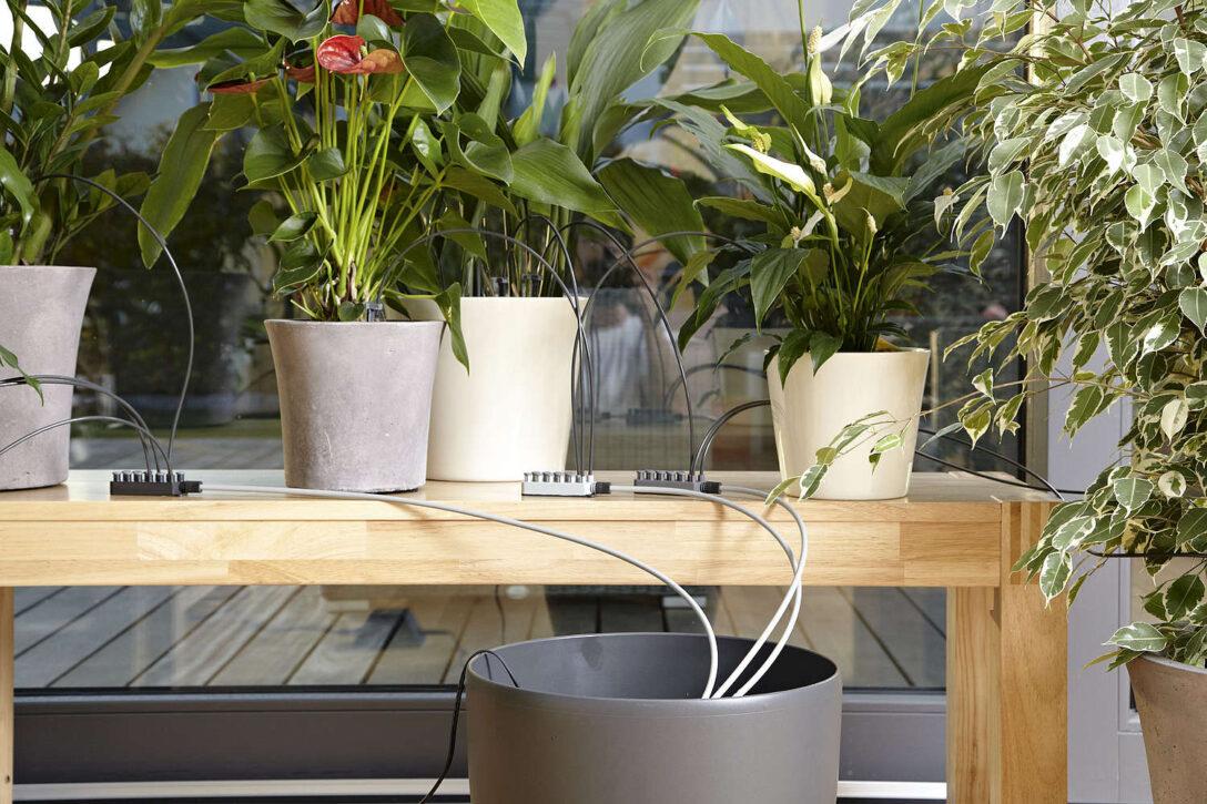 Automatisch Blumen Gieen Lassen Diy Academy Bewässerungssysteme Garten Test Bewässerung Bewässerungssystem