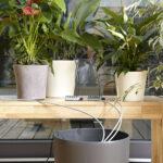 Automatisch Blumen Gieen Lassen Diy Academy Bewässerungssysteme Garten Test Bewässerung Bewässerungssystem Wohnzimmer Bewässerung Balkon