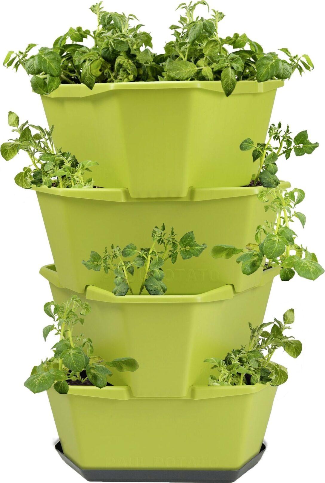 Paul Potato Kartoffelturm Erfahrungen Gusta Garden Starter 4 Etagen Grn Bloomling