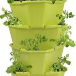 Paul Potato Kartoffelturm Erfahrungen Gusta Garden Starter 4 Etagen Grn Bloomling Wohnzimmer Paul Potato Kartoffelturm Erfahrungen