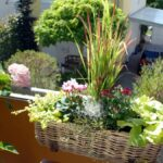 Bewässerung Balkon Bewsserungssytem Diese Helfen Ihren Pflanzen Bei Hitze Welt Bewässerungssysteme Garten Test Bewässerungssystem Automatisch Wohnzimmer Bewässerung Balkon