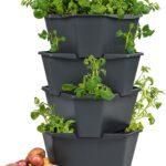Paul Potato Kartoffelturm Erfahrungen Starter 4 Etagen Von Gusta Garden Wohnzimmer Paul Potato Kartoffelturm Erfahrungen
