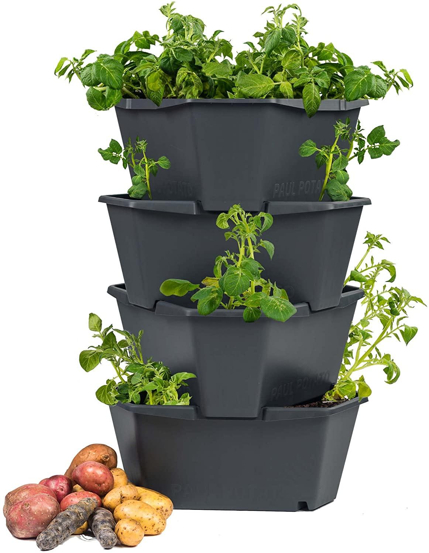 Full Size of Paul Potato Kartoffelturm Erfahrungen Starter 4 Etagen Von Gusta Garden Wohnzimmer Paul Potato Kartoffelturm Erfahrungen